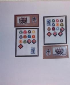 My CanSkate and Skate Canada badges